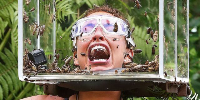 ITV #1 Thursday as 'I'm A Celebrity...Get Me Out of Here!' again was the top program with over 7 million  viewers.
