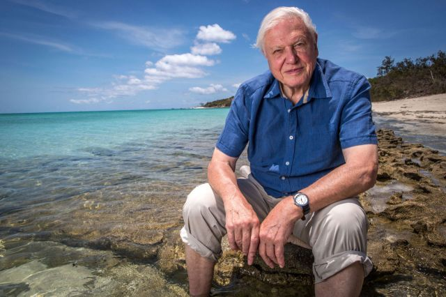 BBC One #1 Wednesday as 'David Attenborough's Great Barrier Reef' was top program.