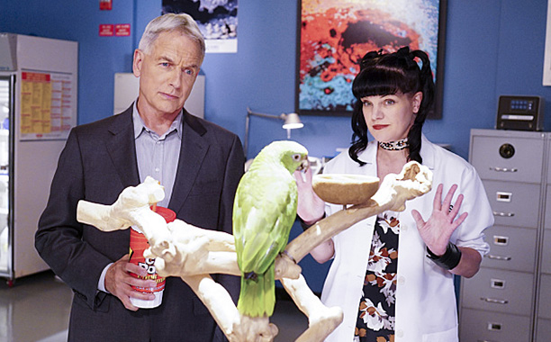 CBS #1 Tuesday as the world's #1 drama, 'NCIS' was the top program.