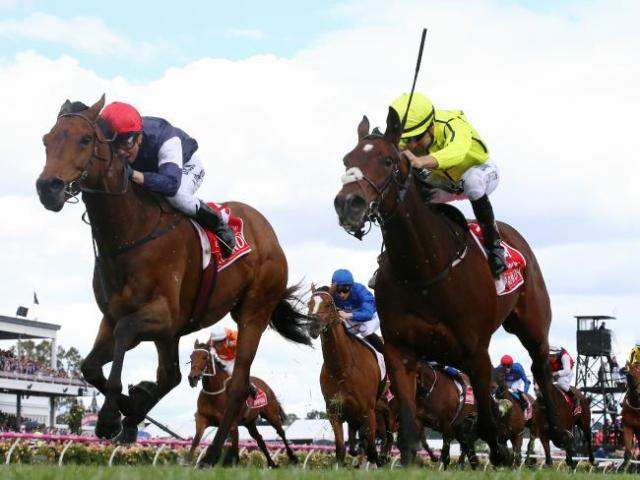 Almandin wins 156th Melbourne Cup Race in Australia Tuesday by a nose. *SEE BELOW....